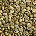 Экстракт зеленого кофе находится в составе биолипосактора