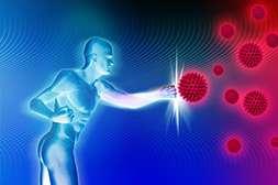 Мицеликс стимулирует синтез иммуннокомпетентных клеток