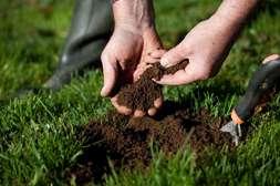 AgroUp можно применять для любых почв.