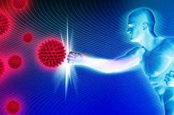 Сивидал вырабатывает в организме защитный механизм.